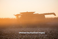 63801-06713 John Deere combine harvesting corn at sunset, Marion Co., IL
