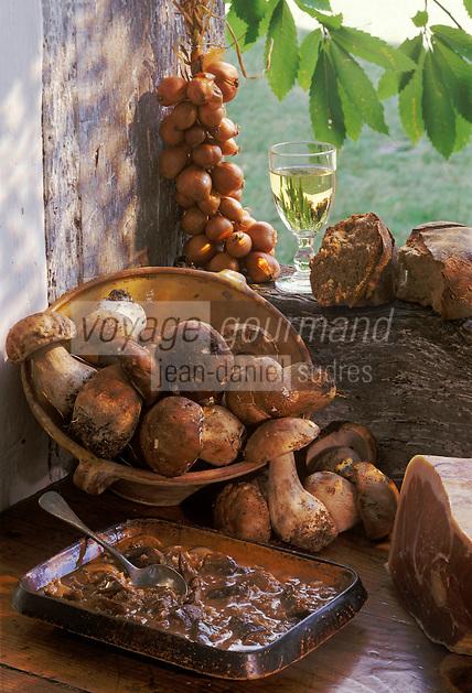 """Europe/France/Aquitaine/40/Landes/Parc Naturel Régional des Landes de Gascogne/Marquèze (écomusée de la Grande Lande): """"Sauce de cèpes""""  Stylisme Valérie Lhomme"""