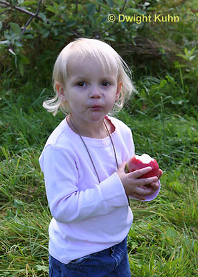 AT05-504z   Picking Apples, PRA