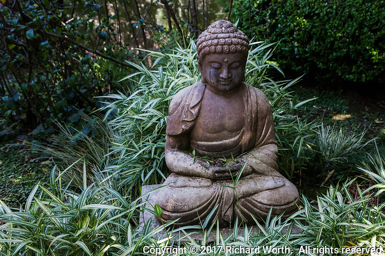 Tucked in a corner, a Buddha statue meditates at the Japanese Garden In San Mateo's City Park.