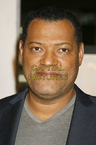 "LAURENCE FISHBURNE.AFI Fest 2006 Opening Night Gala and US Premiere of ""Bobby"" held at Mann's Chinese Theatre, Hollywood, California, USA..November 1st, 2006.Ref: ADM/RE.headshot portrait.www.capitalpictures.com.sales@capitalpictures.com.©Russ Elliot/AdMedia/Capital Pictures."