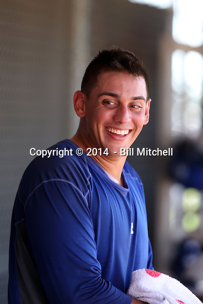 Jose De Leon - 2014 AIL Dodgers (Bill Mitchell)