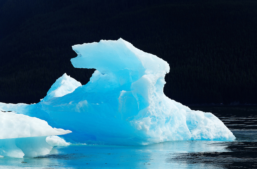Iceberg floating in Tracy Arm, Southeast Alaska, USA