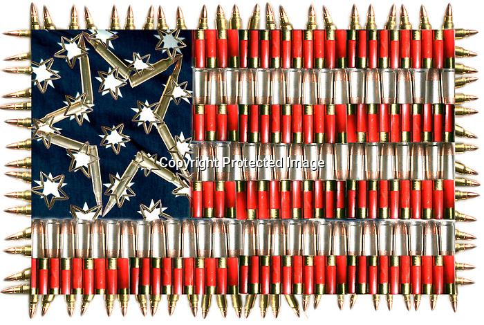 Bullet Flag.jpg   Michael Shane Smith