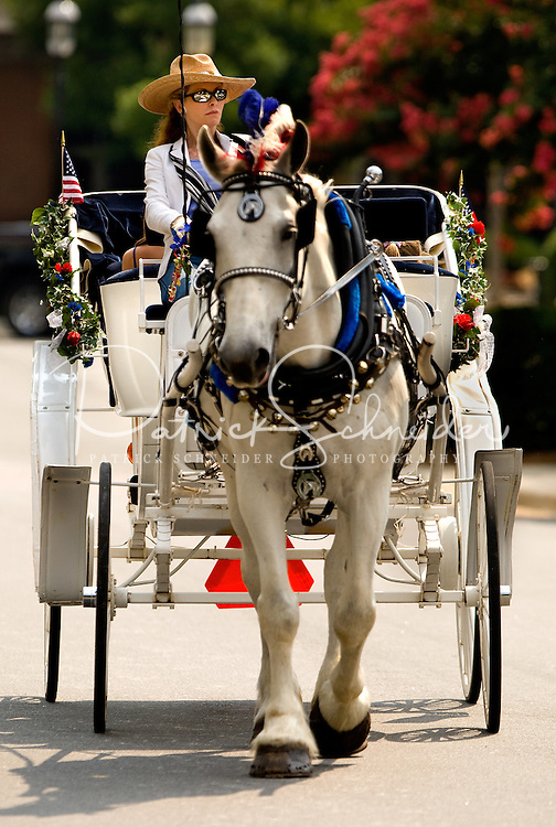 A horse pulls a carriage in the annual Fourth of July Parade at Birkdale Village.  Birkdale Village combines the best of shopping, dining, apartments and entertainment venues within a 52-acre mixed-use development.