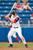 Ryan Lavarnway #33 of the Salem Red Sox at bat against the Kinston Indians at Lewis-Gale Field May 1, 2010, in Winston-Salem, North Carolina.  Photo by Brian Westerholt / Four Seam Images