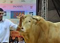 4/10/12 - COURNON - PUY DE DOME - FRANCE - Sommet de l Elevage 2012. Ventes aux encheres Blonde d Aquitaine - Photo Jerome CHABANNE