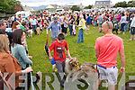 The Dog Show at the Fenit Seabreeze Festival on Sunday.