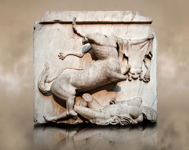 Sculpture of Lapiths and  Centaurs battling from the Metope of the Parthenon on the Acropolis of Athens no XXVIII. Also known as the Elgin marbles. British Museum London.