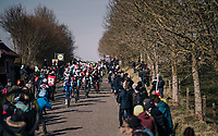 Iljo Keisse (BEL/QuickStep Floors) leading the peloton over the Haaghoek cobbles<br /> <br /> Omloop Het Nieuwsblad 2018<br /> Gent &rsaquo; Meerbeke: 196km (BELGIUM)