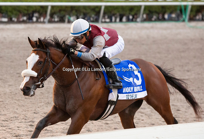 February 1st, 2020: #3 Tiz the Law with jockey Manuel Franco on board wins the  Holy Bull Stakes G3 at Gulfstream Park Race Track in Hallandale Beach, Florida. Liz Lamont/Eclipse Sportswire/CSM