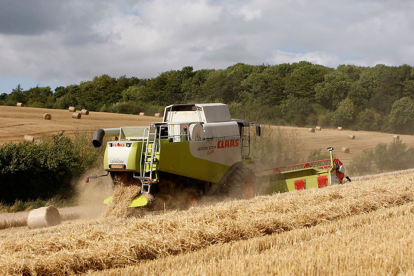 Photo: Richard Lane/Richard Lane Photography. Grain harvest near Amersham, Buckinghamshire. 17/08/2008. A Class combine harvester cutting spring barley on a hill.