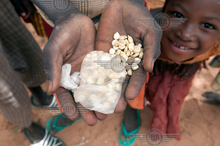 Children scavenge for spilt corn kernals at a food aid distribution centre. A drought in southern Niger has affected up to 8 million people.