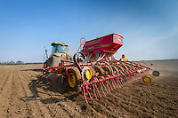 Drilling vining peas in dry conditions - March, South Lincolnshire