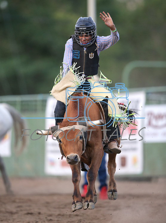 Carlos Gonzales competes in the steer riders portion of the 5th Annual Carson City Bulls, Broncs & Barrels event at Fuji Park, in Carson City, Nev., on Saturday, July 29, 2017. <br /> Photo by Cathleen Allison/Nevada Photo Source
