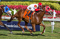 HALLANDALE BEACH, FL - JANUARY 27: Oscar Nominated #8, with Jose Ortiz riding, wins the W.L. McKnight Stakes on Pegasus World Cup Invitational Day at Gulfstream Park Race Track on January 27, 2018 in Hallandale Beach, Florida. (Photo by Liz Lamont/Eclipse Sportswire/Getty Images)
