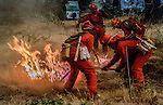 August 19, 1992 Angels Camp, California -- Old Gulch Fire—Firefighters from Conversation Camp hustle to put out spot fire.  The Old Gulch Fire raged over some 18,000 acres, destroying 42 homes while threatening the Mother Lode communities of Murphys, Sheep Ranch, Avery and Forest Meadows.