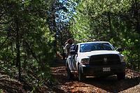 Madrean Diversity Expeditions con la Comisiòn Nacional de Areas Naturales Protegidas, CONANP, en la Sierra del Tigre.Municipio de Nacozari Sonora Mexico.<br /> <br /> CreditoFoto:LuisGutierrez