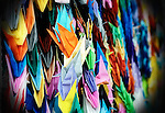 Thousands of paper cranes are hung in a glass presentation case in the Peace Park in Hiroshima, Japan. Visiting school children traditionally adorn the park with paper cranes in memory of Sadako, a 10-year-old leukemia victim who folded thousands of paper cranes in the hope that they would help her recover. The crane is a traditional symbol of good fortune and longevity in Japan due to its fabled lifespan of 1,000 years.