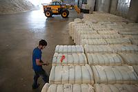 TURKEY, Kesik, near Menemen, Genel Pamuk ginning factory, processing of harvested conventional cotton, seperating of fibre and seed and pressing and packaging in cotton bales to supply the turkish textile industry, measuring of moisture / TUERKEI, Kesik, bei Menemen, Entkernungsfabrik Genel Pamuk, die konventionelle Baumwolle wird hier weiter verarbeitet, es werden Faser und Baumwollsamen sowie Stiel- u. Blattreste getrennt und die Baumwollefaser in Ballen gepresst und verpackt und an die tuerkische Textilindustrie geliefert, Messung der Feuchtigkeit