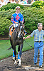 Ambusher before The Obeah Stakes (gr 3) at Delaware Park racetrack on 6/14/14