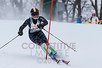 2013 Minnesota High School League Section 4 Alpine Meeting