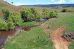 NSW Rural Country Yarrowitch near Walcha NSW