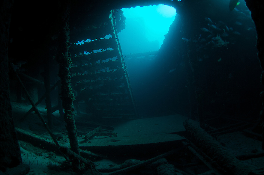 Inside the hull of an old vessel sunk for an artificial reef. Artificial reef named Ancient Mariner.