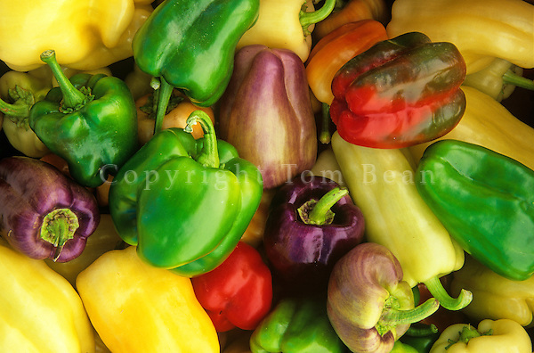 Organically Grown Sweet Peppers, Chino Valley, Arizona, AGPix_0329