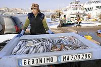 - Marsiglia, mercato del pesce al Porto Vecchio....- Marseille, fish market in the Old Port