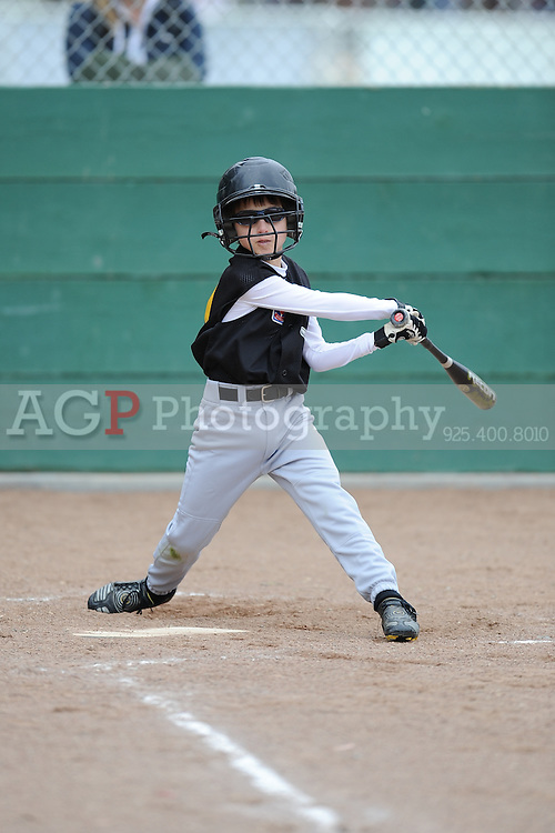 The AAA Pirates play on opening day in Pleasanton National Little League  March 14, 2009.