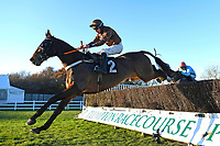 The Lion Dancer ridden by Gavin Sheehan in The Tysers Handicap Chase during Horse Racing at Plumpton Racecourse on 2nd December 2019