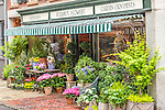 Flower shop on Beacon Hill, Boston, Massachusetts, USA