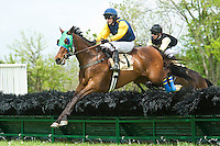 21 April 2012:   Brave Prospect and Xavier Aizpuru win the Glenwood Hurdle at Middleburg Spring Races at Glenwood Park in Middleburg, Va. Brave Prospect is owned by Woodslane Farm and trained by Jack Fisher.  Susan M. Carter/Eclipse Sportswire