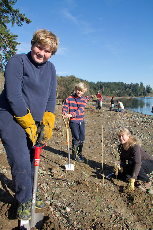 Volunteers planting dune grass, Lower Discovery Bay Estuary Restoration, North Olympic Salmon Coalition, shoreline, estuary, critical habitat, ESA-listed Hood Canal Summer Chum, Discovery Bay, Puget Sound, Salish Sea, Jefferson County, Washington State, Funding through the Floodplains by Design Initiative, conservation, land preservation,