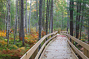 Pondicherry Wildlife Refuge - Mud Pond Trail in Jefferson, New Hampshire USA during the autumn months.