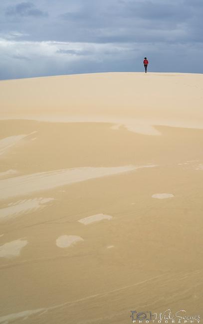 Far Away. Stockton Beach Sand dunes Worimi Conservation Lands. Anna Bay, Port Stephens, NSW, Australia