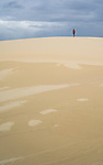 Far Away. Stockton Beach Sand dunes Worimi Conservation Lands. Anna Bay, Port Stephens, NSW, Australia