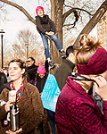 February 11, 2017. Raleigh, North Carolina.<br /> <br /> Boone Donegan, age 8, climbed a tree to get a better look at the HKONJ pre-march speakers. <br /> <br /> Thousands gathered in downtown Raleigh for the annual HKONJ People's Assembly, a civil rights march tied to the Moral Monday movement. Supporters from around the state gathered to march and speak out against nationwide attacks on civil rights and the Trump administration.<br /> <br /> Jeremy M. Lange for The New York Times