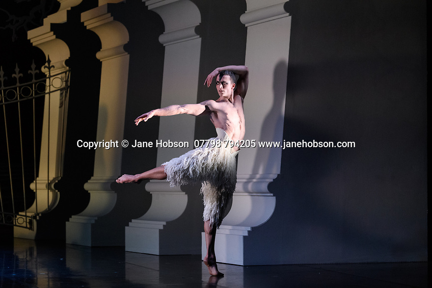 """London, UK. 07.12.2018. Matthew Bourne's """"Swan Lake"""" returns to Sadler's Wells Theatre, for a run until Sunday 27th January 2019. Choreographed by Matthew Bourne, with lighting design by Paule Constable and costume design by Lez Brotherston. Dancer are: Matthew Ball (The Swan), Liam Mower (The Prince), Nicole Kabera (The Queen), Katrina Lyndon (The Girlfriend), Glenn Graham (The Private Secretary), Megan Cameron (The Hungarian Princess), Freya Field (The German Princess), Zanna Cornelis (The Romanian Princess), Nicole Alphonse, Jonathan Luke Baker, Tom Broderick, Kayla Collymore, Keenan Flethcer, Bryony Harrison, Parsifal James Hurst, Jack Mitchell, Harry Ondak-Wright, Ashley-Jordan Packer, Jack William Parry, Stan West, Carrie Willis. Picture shows: Matthew Ball (The Swan). Photograph © Jane Hobson."""