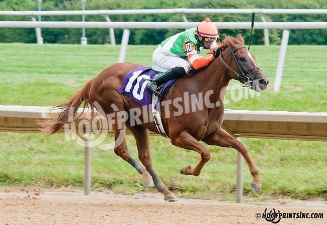 Edyanne winning at Delaware Park on 7/13/13