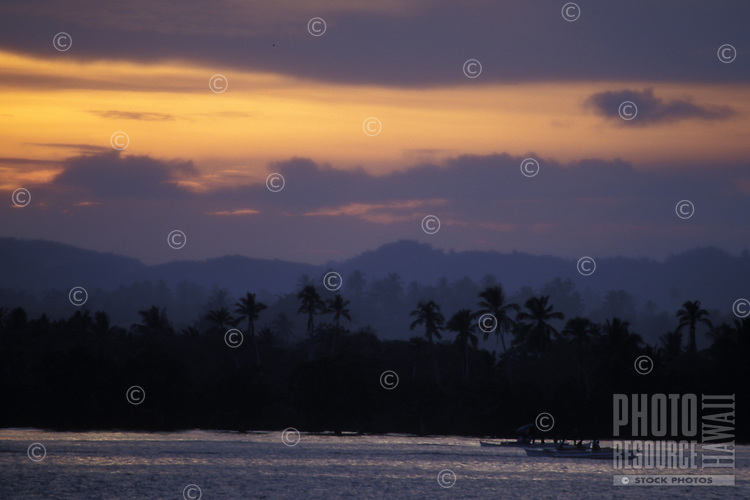 Local outrigger canoes along palm lined shore at sunset, Siargao Island, Philippines