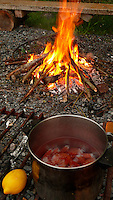 A campfire and seafood dinner of spot prawns in the San Juan islands of Washington state.