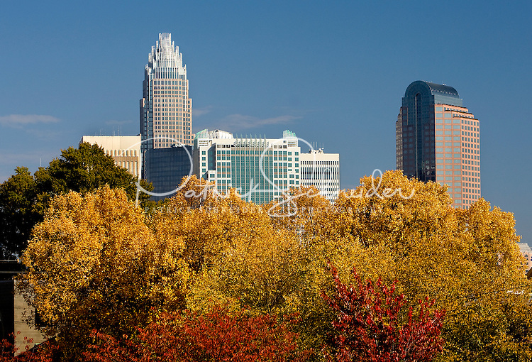 Fall in uptown Charlotte, NC.
