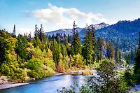 Eel River, California Redwoods, Phillipsville California