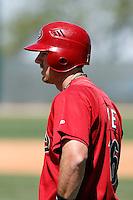 Andrew Fie - Arizona Diamondbacks - 2009 spring training.Photo by:  Bill Mitchell/Four Seam Images