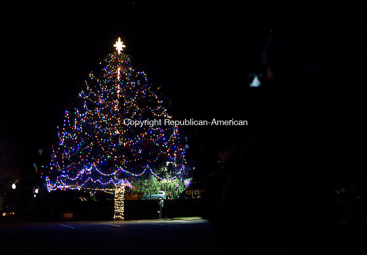 Southbury, CT- 05 December 2015-120515CM08-   Nancy Lieffort of Southbury takes a photo of the town's Christmas Tree in Southbury on Saturday.  The town held it's 17th Annual Holiday Tree Lighting at the Memorial Green, an event sponsored by the Southbury Parks and Recreation Department.    Christopher Massa Republican-American