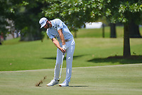 Dustin Johnson (USA) hits his approach shot on 9 during round 3 of the WGC FedEx St. Jude Invitational, TPC Southwind, Memphis, Tennessee, USA. 7/27/2019.<br /> Picture Ken Murray / Golffile.ie<br /> <br /> All photo usage must carry mandatory copyright credit (© Golffile | Ken Murray)