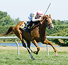 Mykindofladyfriend winning at Delaware Park on 7/25/12