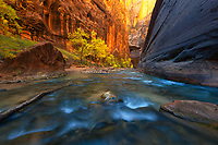 The Virgin River cuts through deep sandstone, complemented by golden light and colorful foliage.